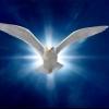 Духовний світ особистості: поняття та складові