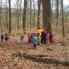 Правила безпеки, або Як поводитися в лісі