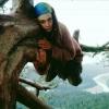 Чи правда, що обіймати дерева корисно для здоров'я?