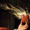 Навіщо алхіміки шукали філософський камінь і хто знайшов його?