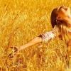 8 Речей, які роблять щасливі люди, але про які вони рідко говорять